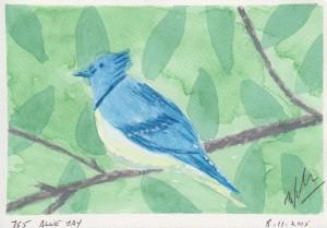 755 BLUE JAY